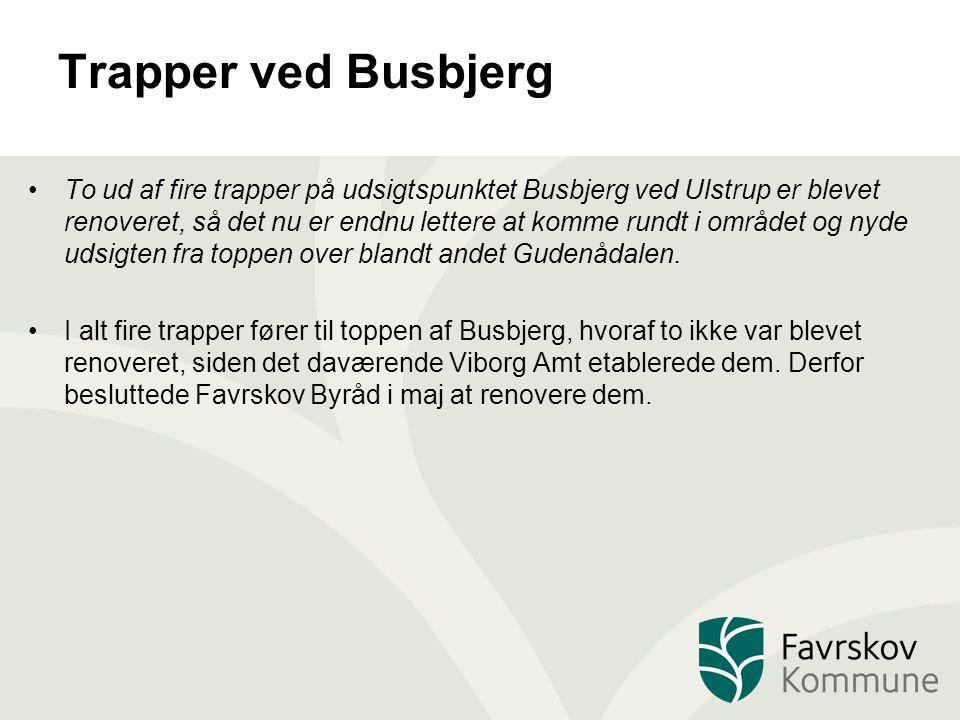Trapper ved Busbjerg To ud af fire trapper på udsigtspunktet Busbjerg ved Ulstrup er blevet renoveret, så det nu er endnu lettere at komme rundt i området og nyde udsigten fra toppen over blandt andet Gudenådalen.