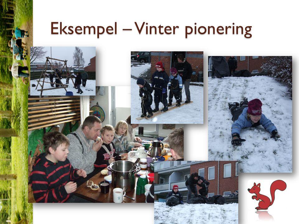 Eksempel – Vinter pionering