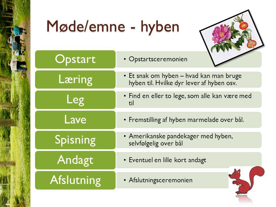 Møde/emne - hyben Opstartsceremonien Opstart Et snak om hyben – hvad kan man bruge hyben til.