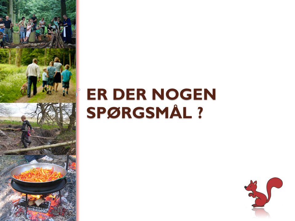 ER DER NOGEN SPØRGSMÅL