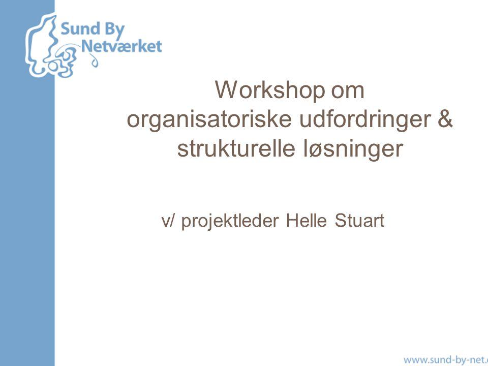 Workshop om organisatoriske udfordringer & strukturelle løsninger v/ projektleder Helle Stuart