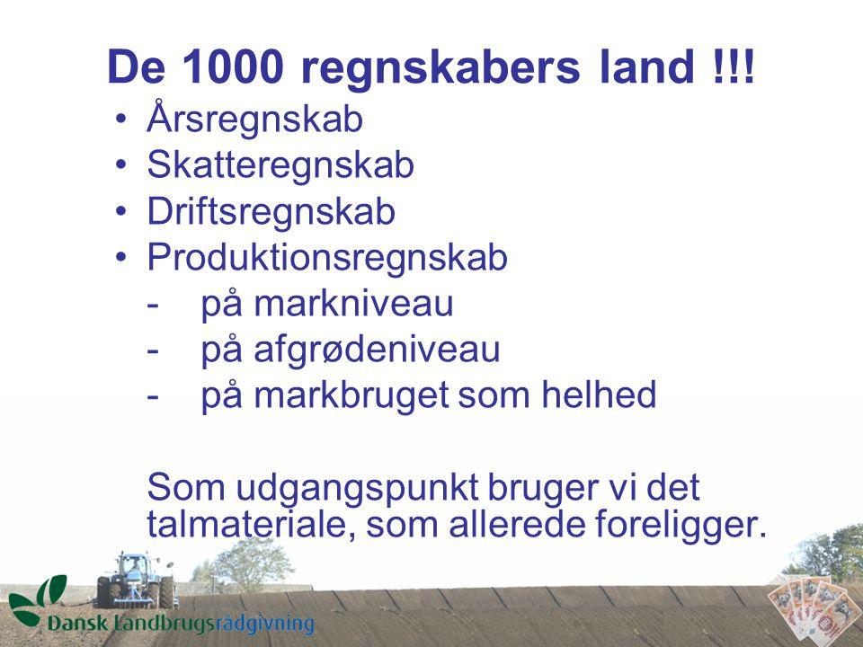 De 1000 regnskabers land !!.