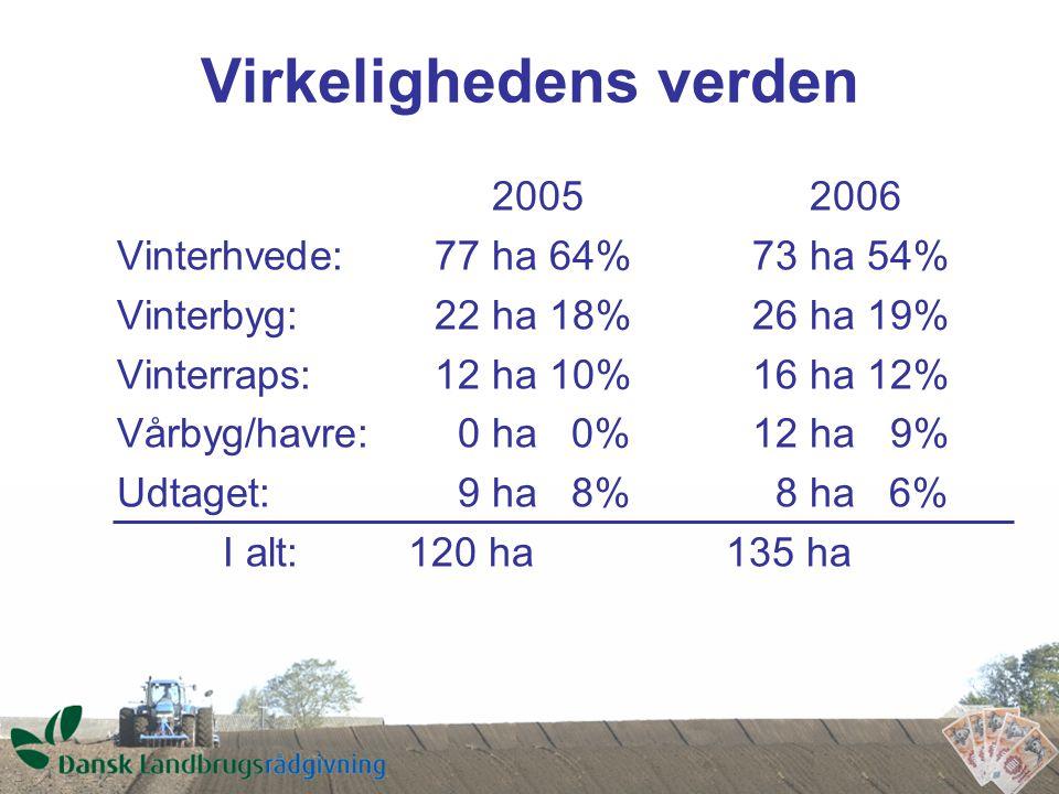 Virkelighedens verden 2005 2006 Vinterhvede:77 ha 64%73 ha 54% Vinterbyg:22 ha 18%26 ha 19% Vinterraps:12 ha 10%16 ha 12% Vårbyg/havre: 0 ha 0%12 ha 9% Udtaget: 9 ha 8% 8 ha 6% I alt: 120 ha 135 ha