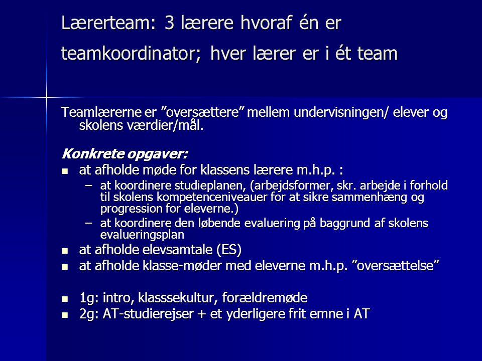 Lærerteam: 3 lærere hvoraf én er teamkoordinator; hver lærer er i ét team Teamlærerne er oversættere mellem undervisningen/ elever og skolens værdier/mål.