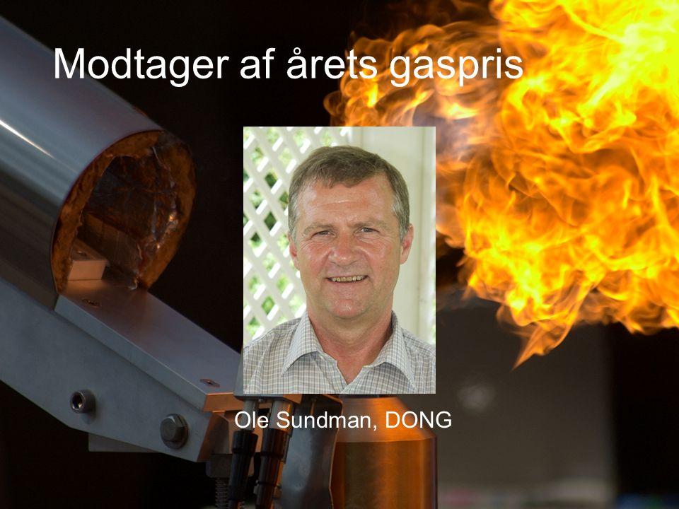Modtager af årets gaspris Ole Sundman, DONG