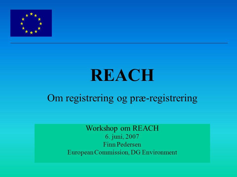 Workshop om REACH 6.