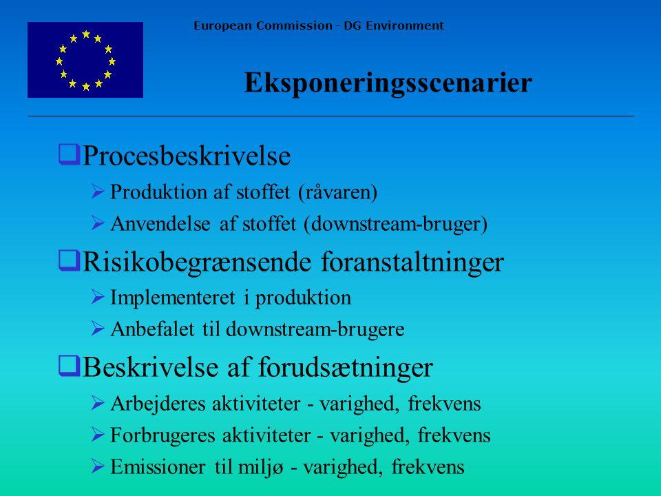 European Commission - DG Environment Eksponeringsscenarier  Procesbeskrivelse  Produktion af stoffet (råvaren)  Anvendelse af stoffet (downstream-bruger)  Risikobegrænsende foranstaltninger  Implementeret i produktion  Anbefalet til downstream-brugere  Beskrivelse af forudsætninger  Arbejderes aktiviteter - varighed, frekvens  Forbrugeres aktiviteter - varighed, frekvens  Emissioner til miljø - varighed, frekvens