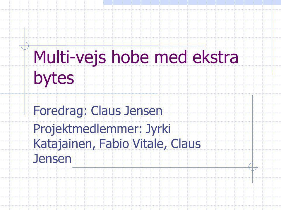 Multi-vejs hobe med ekstra bytes Foredrag: Claus Jensen Projektmedlemmer: Jyrki Katajainen, Fabio Vitale, Claus Jensen