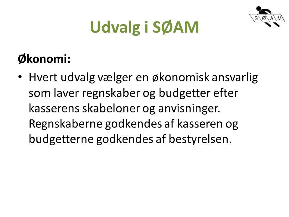 Udvalg i SØAM Økonomi: Hvert udvalg vælger en økonomisk ansvarlig som laver regnskaber og budgetter efter kasserens skabeloner og anvisninger.
