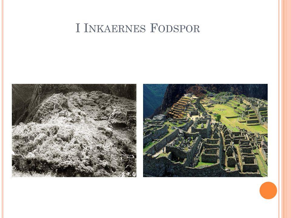 I I NKAERNES F ODSPOR