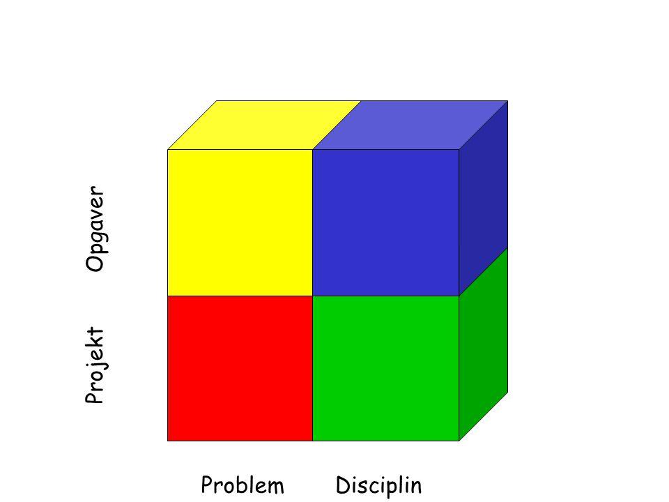 DisciplinProblem Projekt Opgaver Gruppearbejde Individuel