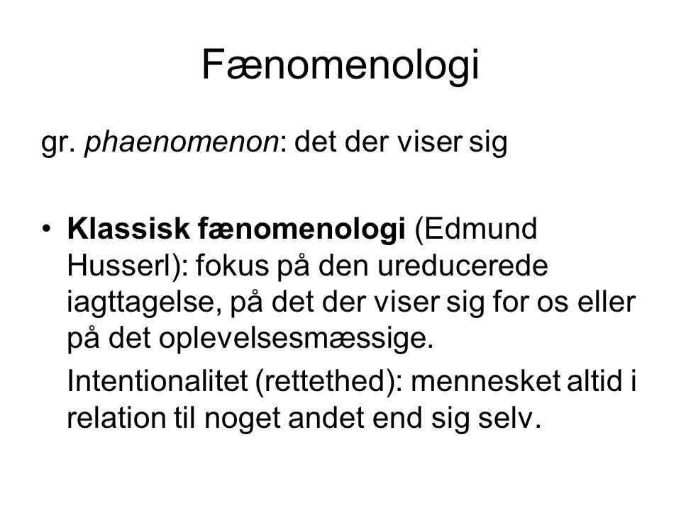 Fænomenologi gr.