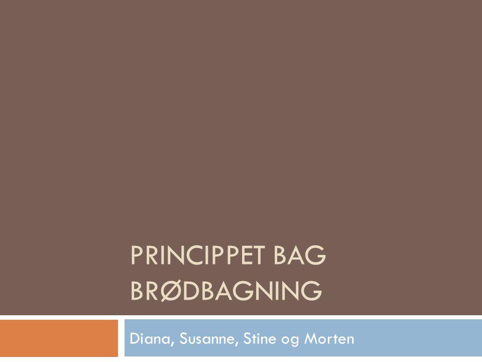 PRINCIPPET BAG BRØDBAGNING Diana, Susanne, Stine og Morten