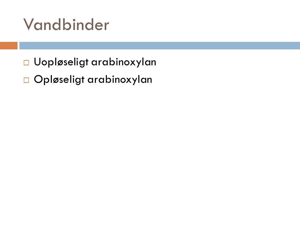 Vandbinder  Uopløseligt arabinoxylan  Opløseligt arabinoxylan