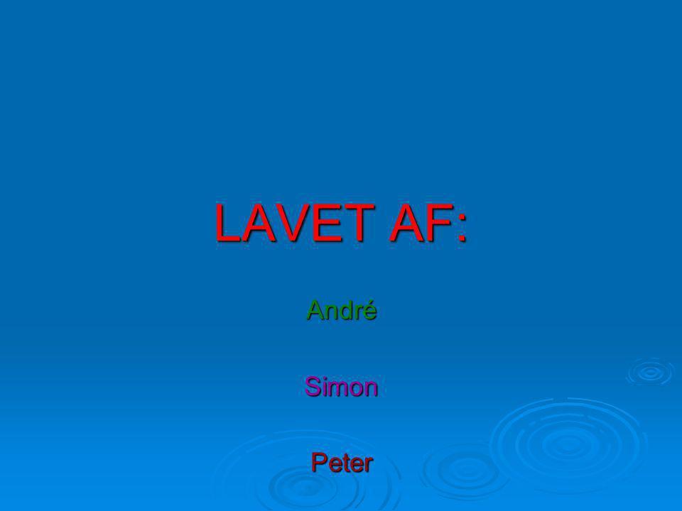 LAVET AF: AndréSimonPeter