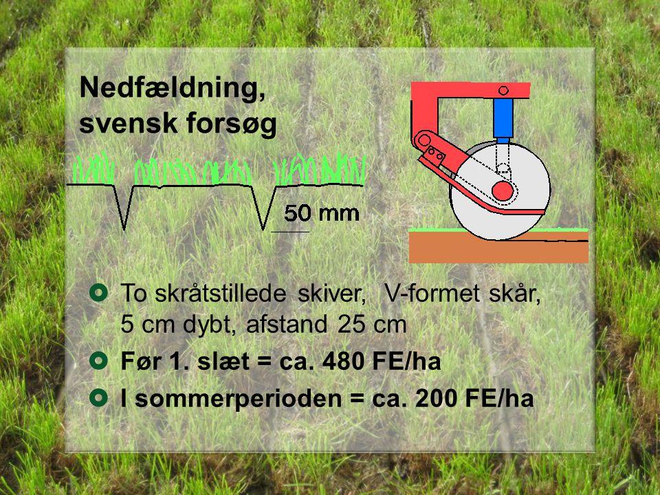 Nedfældning, svensk forsøg 13  To skråtstillede skiver, V-formet skår, 5 cm dybt, afstand 25 cm  Før 1.