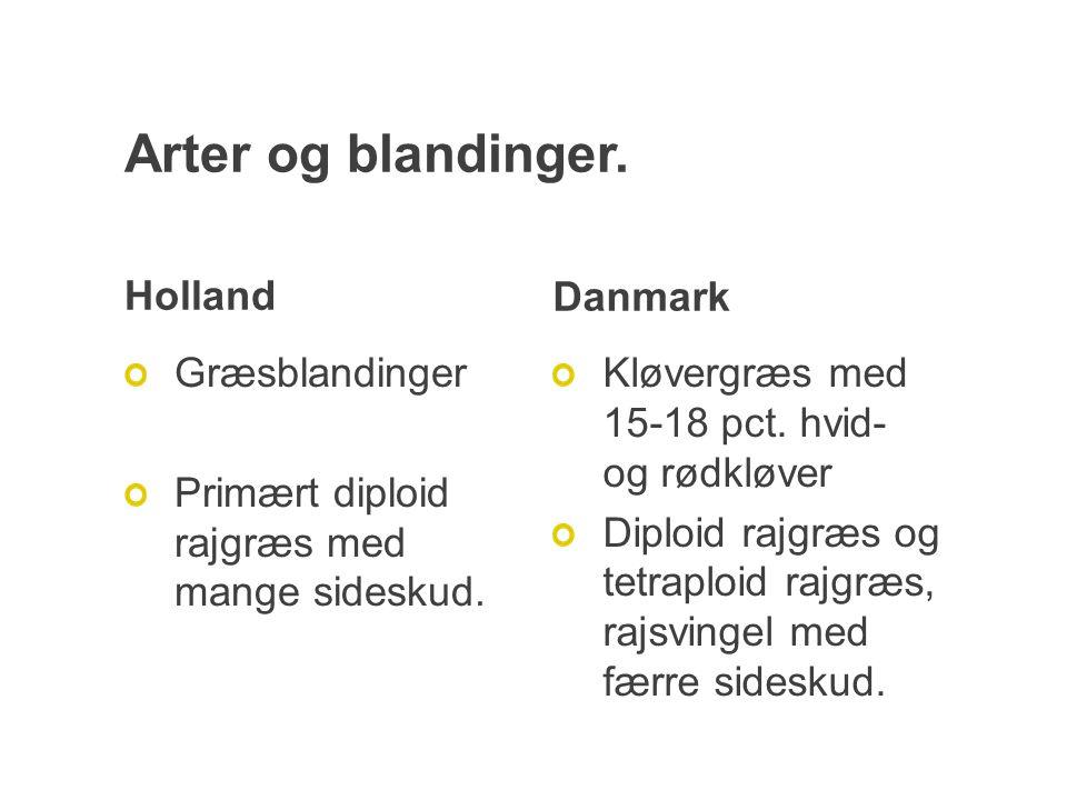 Arter og blandinger. Holland Græsblandinger Primært diploid rajgræs med mange sideskud.