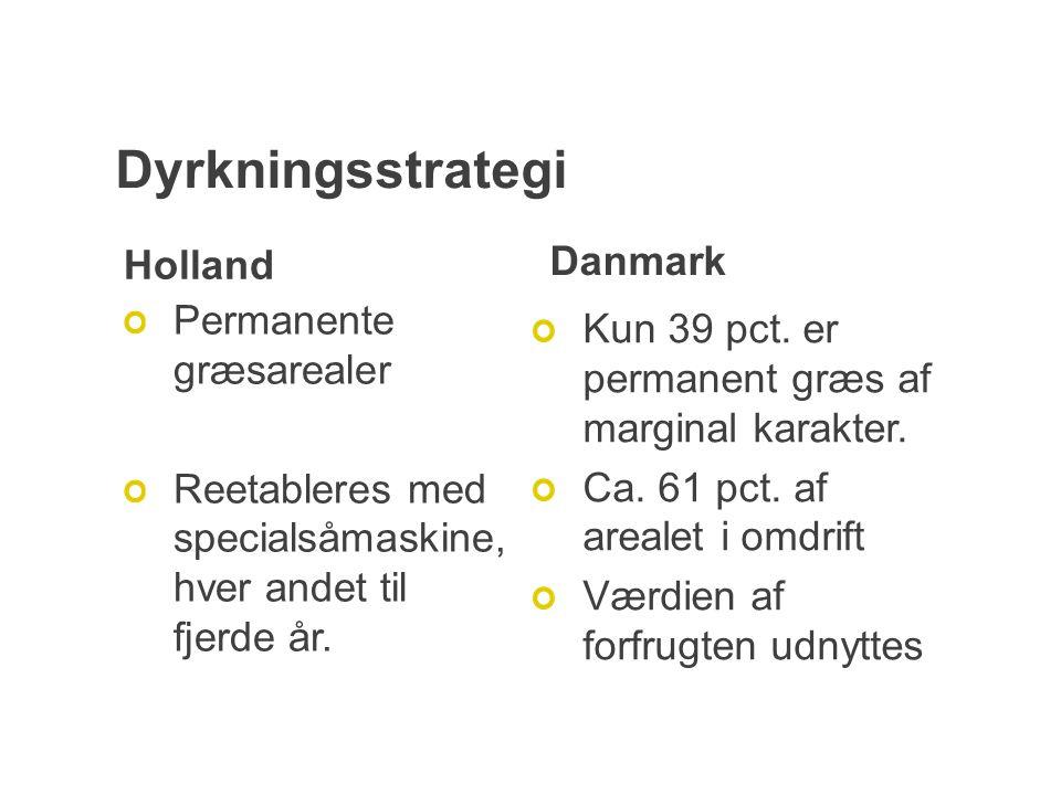 Dyrkningsstrategi Holland Permanente græsarealer Reetableres med specialsåmaskine, hver andet til fjerde år.