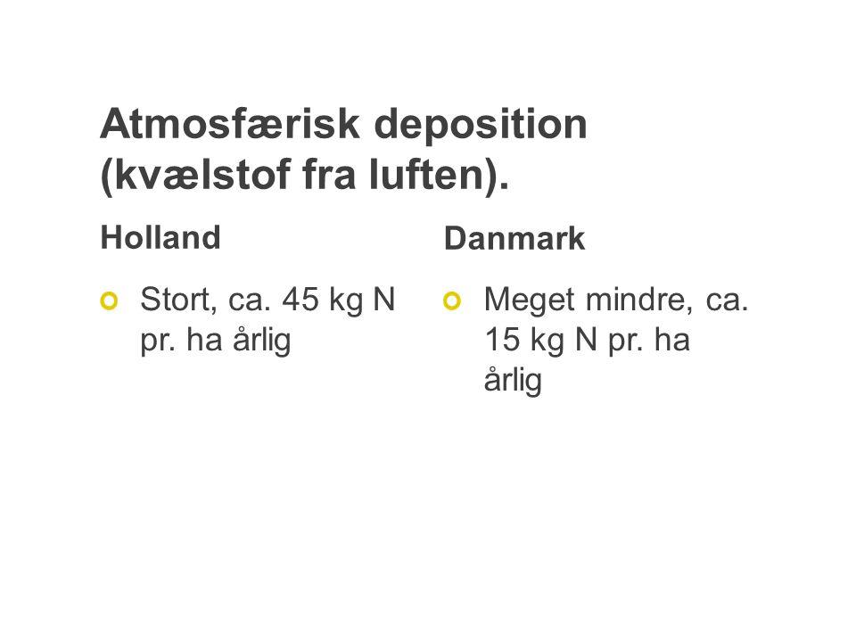 Atmosfærisk deposition (kvælstof fra luften). Holland Stort, ca.