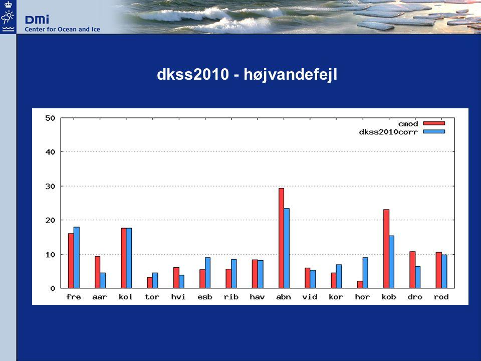dkss2010 - højvandefejl