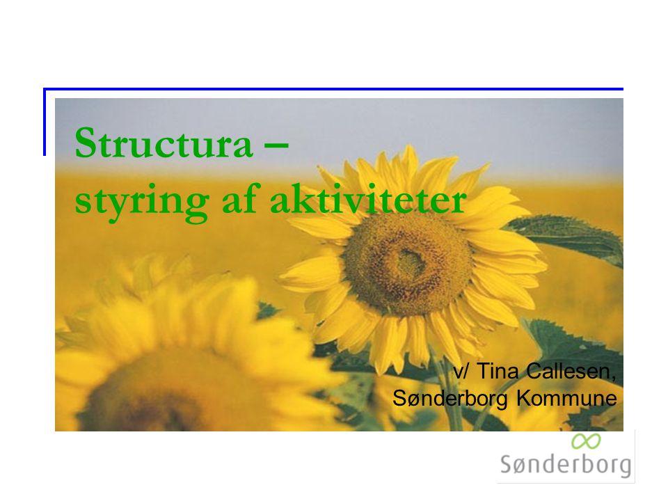 Structura – styring af aktiviteter v/ Tina Callesen, Sønderborg Kommune