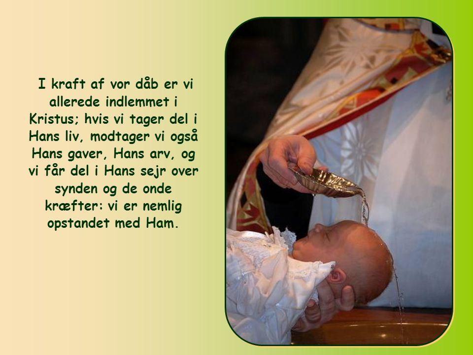 Vi er ikke bare kaldet til denne Kristi verden, siger Paulus, vi tilhører den allerede.