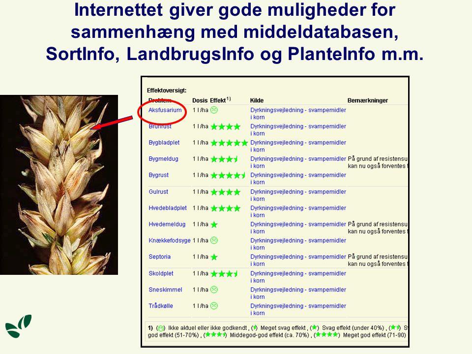 Internettet giver gode muligheder for sammenhæng med middeldatabasen, SortInfo, LandbrugsInfo og PlanteInfo m.m.