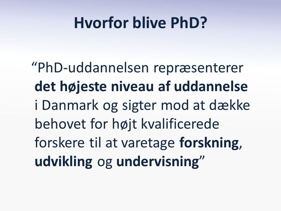 Hvorfor blive PhD.