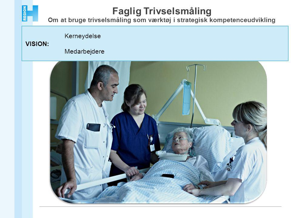 Kerneydelse VISION: Medarbejdere Faglig Trivselsmåling Om at bruge trivselsmåling som værktøj i strategisk kompetenceudvikling