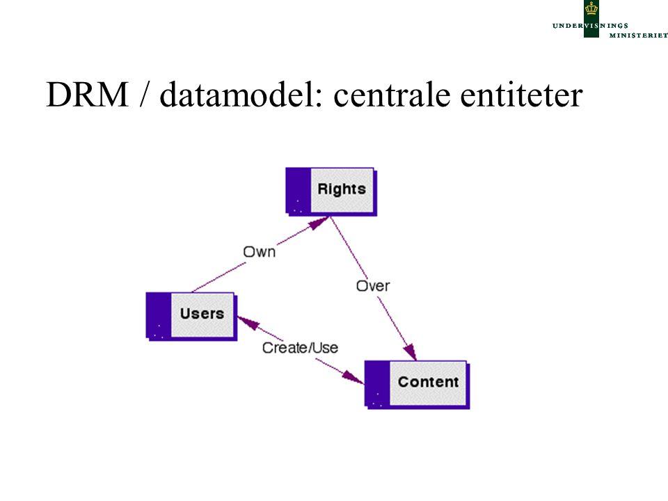 DRM / datamodel: centrale entiteter