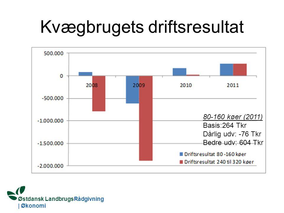 Østdansk LandbrugsRådgivning | Økonomi Kvægbrugets driftsresultat 80-160 køer (2011) Basis:264 Tkr Dårlig udv: -76 Tkr Bedre udv: 604 Tkr