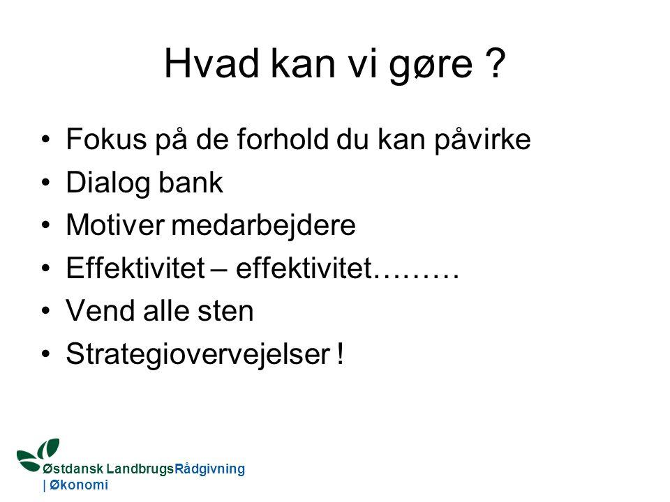 Østdansk LandbrugsRådgivning | Økonomi Hvad kan vi gøre .