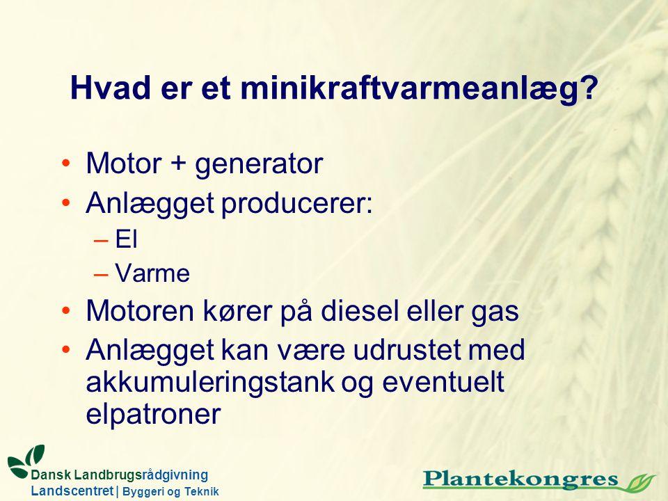 Dansk Landbrugsrådgivning Landscentret | Byggeri og Teknik Hvad er et minikraftvarmeanlæg? Motor + generator Anlægget producerer: –El –Varme Motoren k