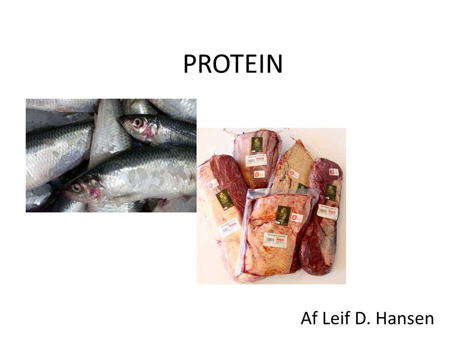 Protein Hvilken gren inden for kemien.– Organisk kemi Hvad protein.