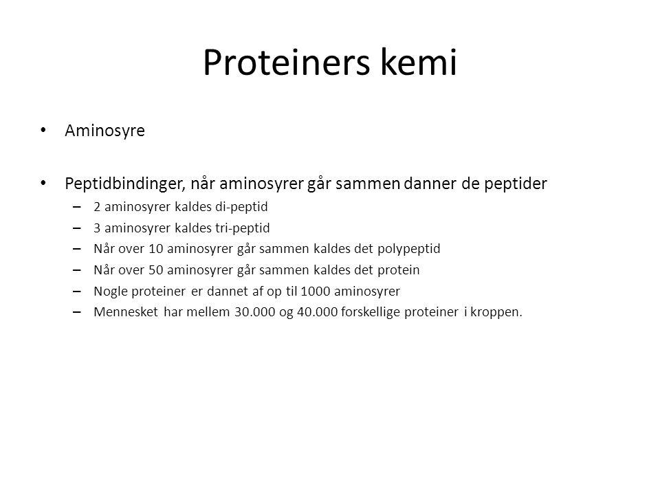 Proteiners kemi Aminosyre Peptidbindinger, når aminosyrer går sammen danner de peptider – 2 aminosyrer kaldes di-peptid – 3 aminosyrer kaldes tri-peptid – Når over 10 aminosyrer går sammen kaldes det polypeptid – Når over 50 aminosyrer går sammen kaldes det protein – Nogle proteiner er dannet af op til 1000 aminosyrer – Mennesket har mellem 30.000 og 40.000 forskellige proteiner i kroppen.