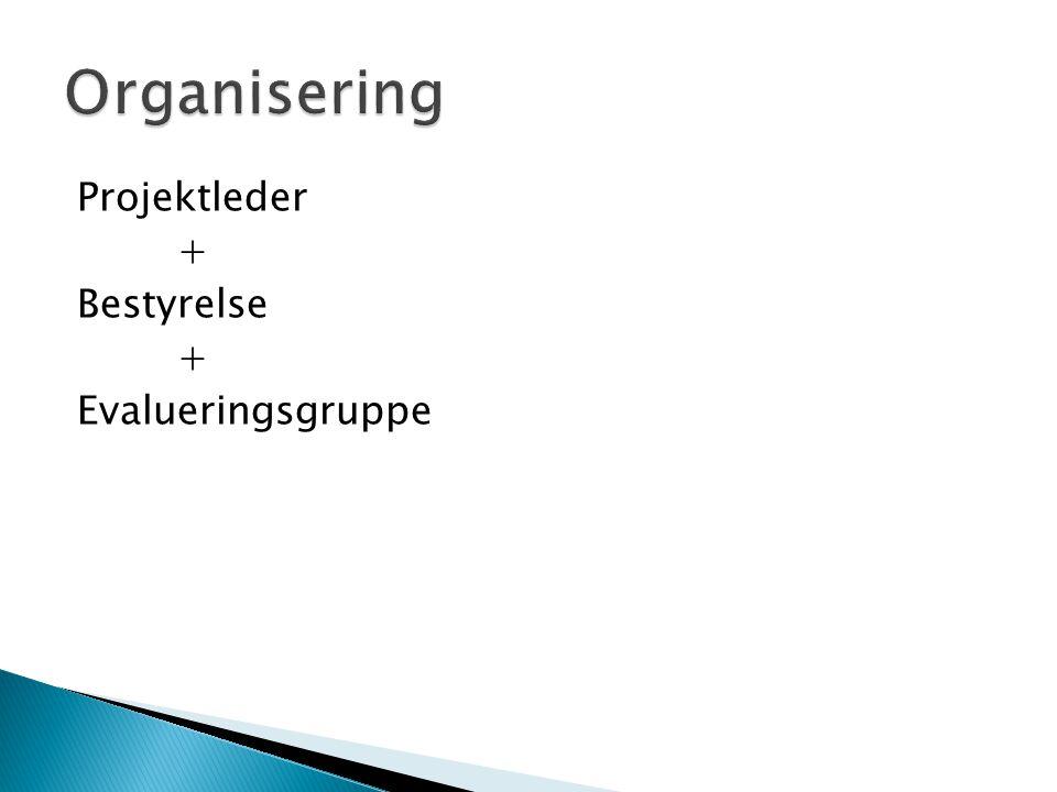 Projektleder + Bestyrelse + Evalueringsgruppe