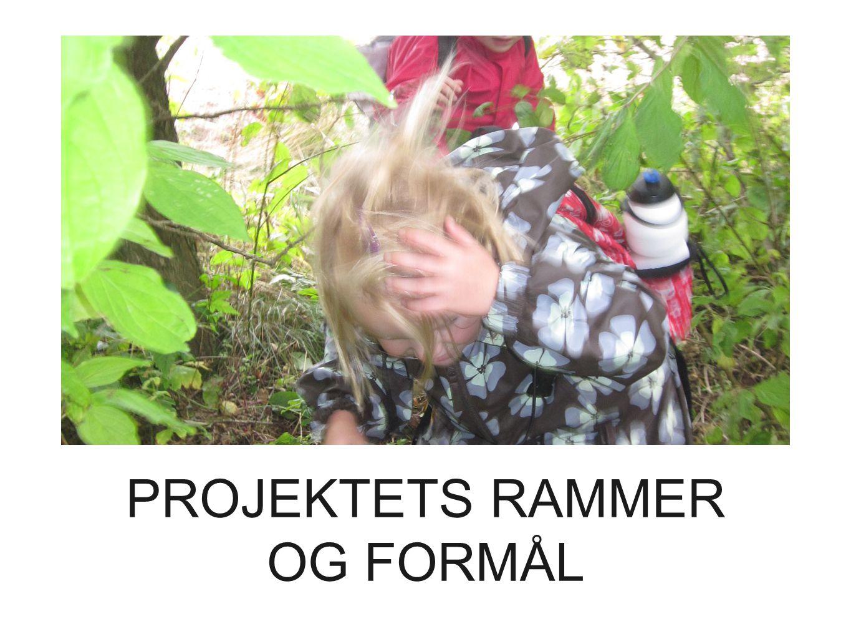 PROJEKTETS RAMMER OG FORMÅL