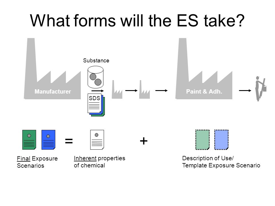 Paint & Adh. What forms will the ES take.