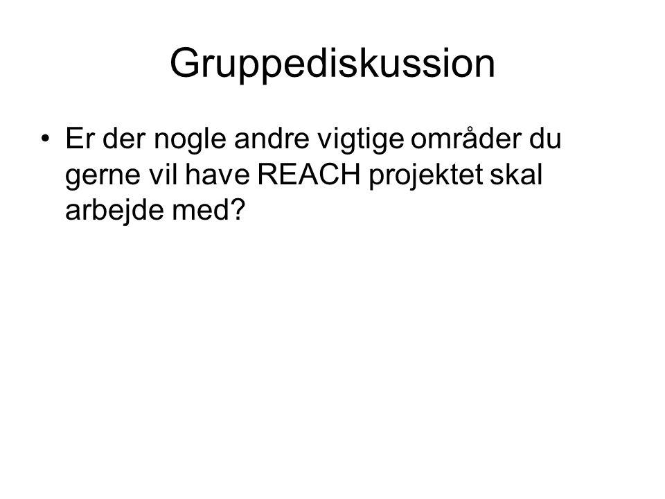 Gruppediskussion Er der nogle andre vigtige områder du gerne vil have REACH projektet skal arbejde med