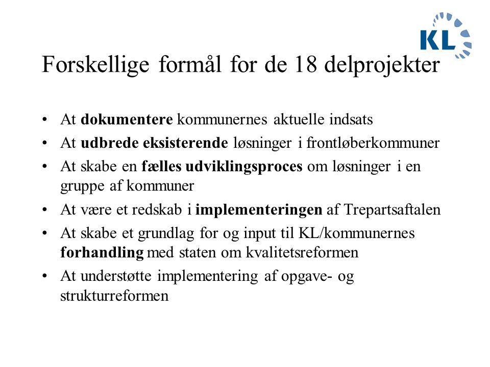 Det fælleskommunale kvalitetsprojekt - indhold 18 delprojekter under følgende fire hovedtemaer: 1.Ledelse 2.Attraktive arbejdspladser 3.Kvalitet i kerneydelsen 4.Styring og dokumentation Projekterne er aftalt mellem kommunaldirektørerne og KL