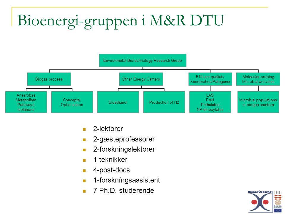 Bioenergi-gruppen i M&R DTU 2-lektorer 2-gæsteprofessorer 2-forskningslektorer 1 teknikker 4-post-docs 1-forskníngsassistent 7 Ph.D.