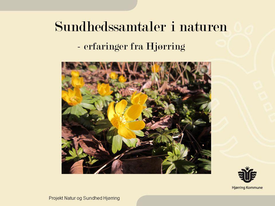 Sundhedssamtaler i naturen - erfaringer fra Hjørring Projekt Natur og Sundhed Hjørring