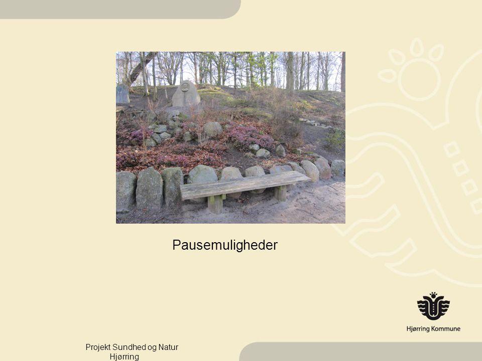 Pausemuligheder Projekt Sundhed og Natur Hjørring