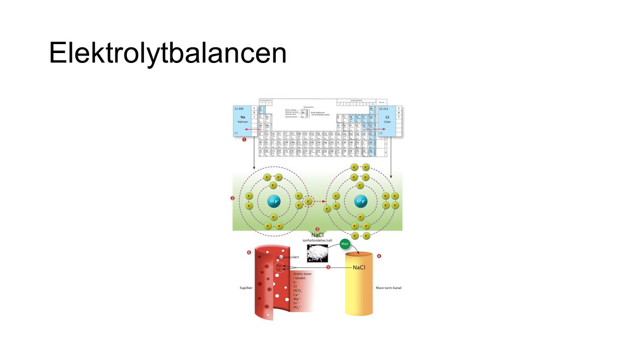 Elektrolytbalancen