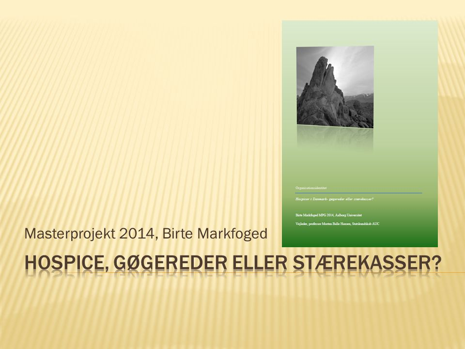 Masterprojekt 2014, Birte Markfoged