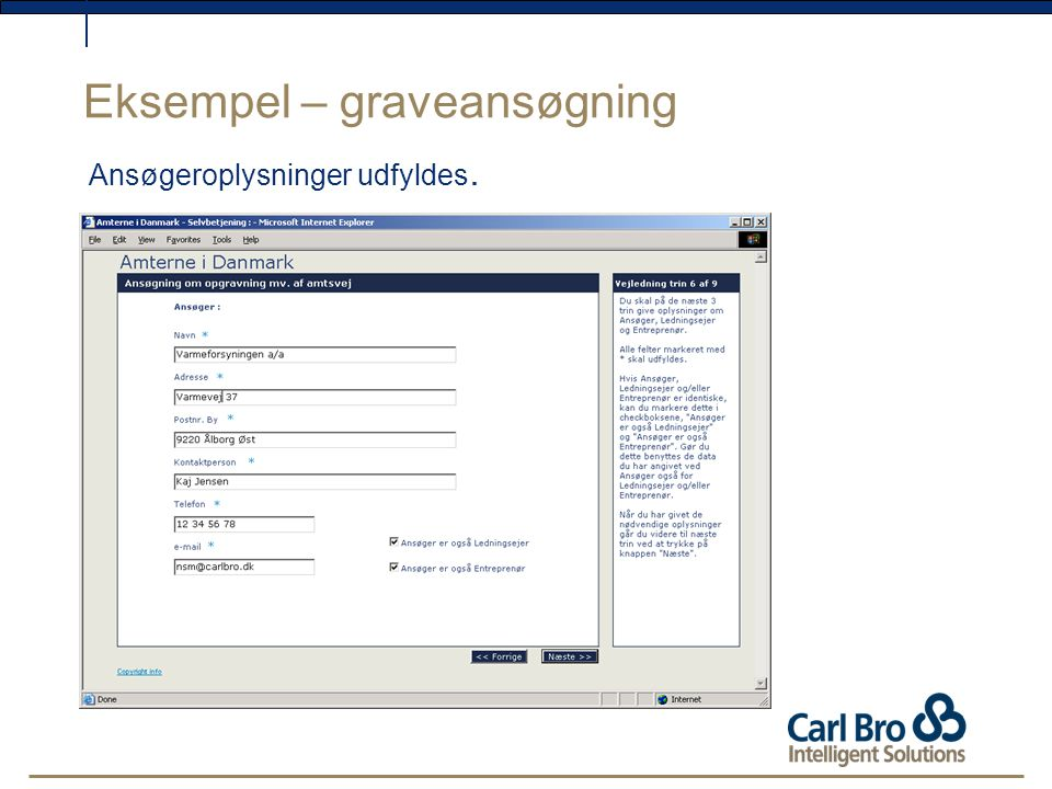 Eksempel – graveansøgning Ansøgeroplysninger udfyldes.