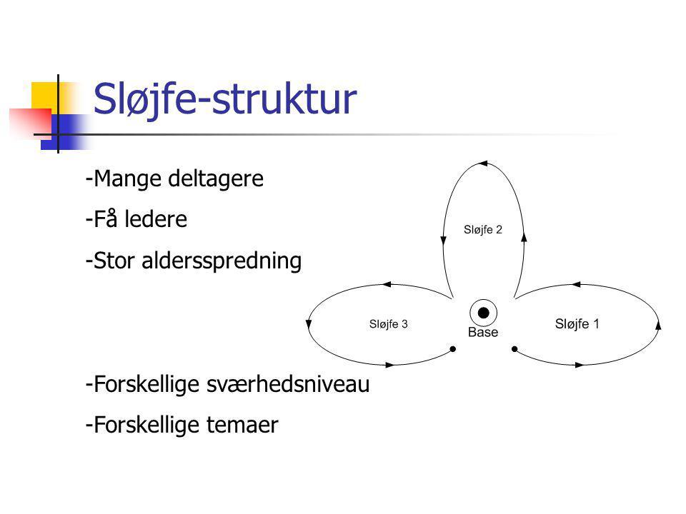 Sløjfe-struktur -Mange deltagere -Få ledere -Stor aldersspredning -Forskellige sværhedsniveau -Forskellige temaer