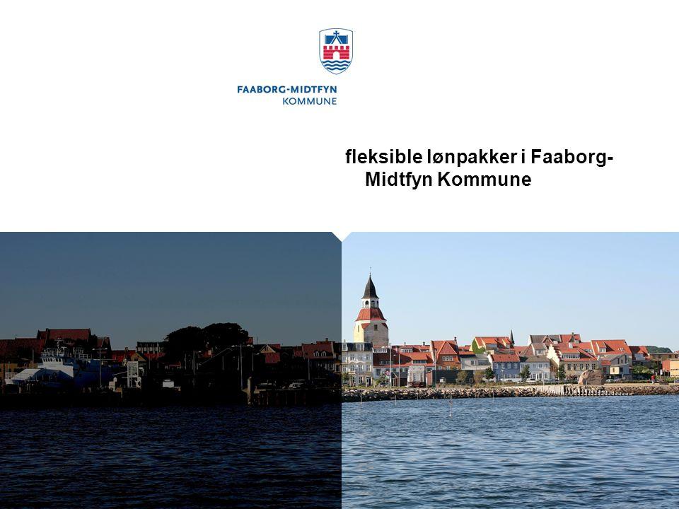 fleksible lønpakker i Faaborg- Midtfyn Kommune