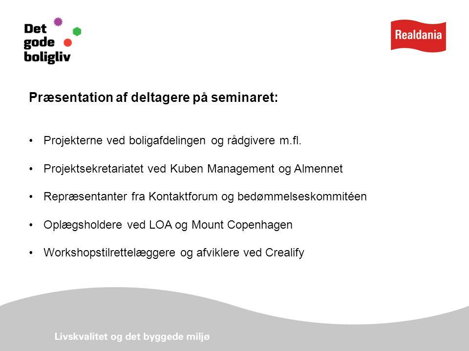 Præsentation af deltagere på seminaret: Projekterne ved boligafdelingen og rådgivere m.fl.
