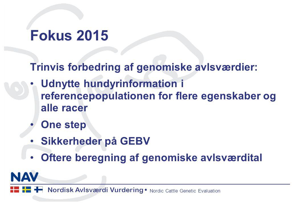 Nordisk Avlsværdi Vurdering Nordic Cattle Genetic Evaluation Fokus 2015 Trinvis forbedring af genomiske avlsværdier: Udnytte hundyrinformation i referencepopulationen for flere egenskaber og alle racer One step Sikkerheder på GEBV Oftere beregning af genomiske avlsværdital
